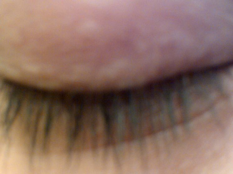 lashes with no mascara