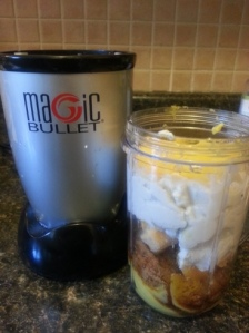 Magic Bullet icecream (4)