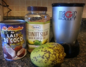 Magic Bullet icecream ingredients