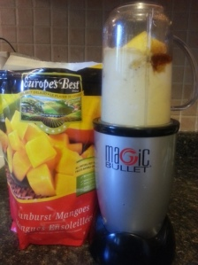 Magic Bullet icecream- ingredients
