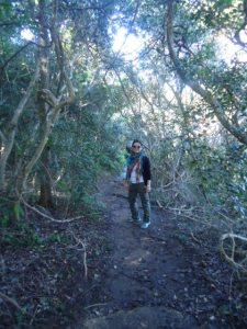 Trail to Collins beach
