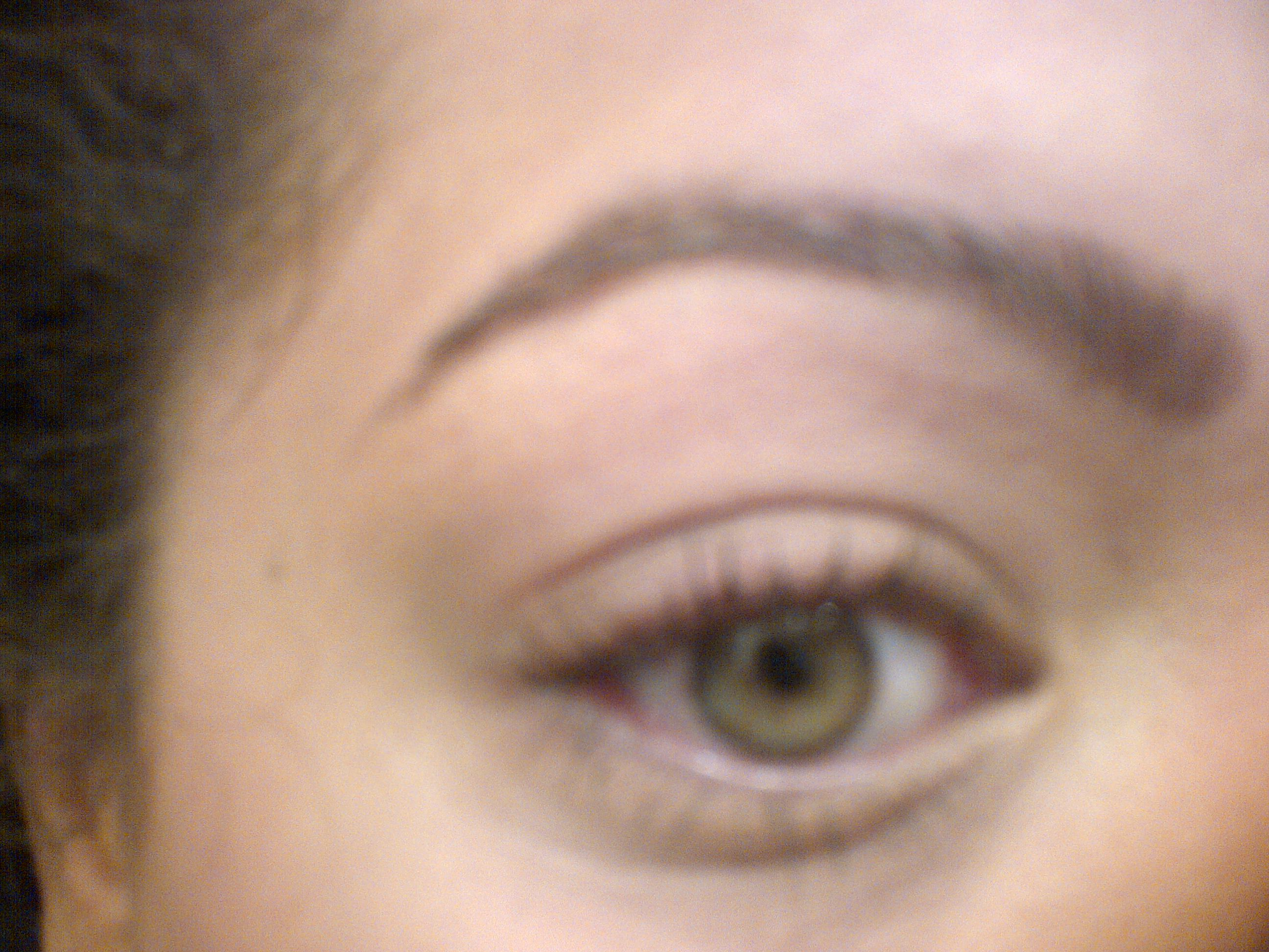 Product Review Nyx Eyebrow Kit With Stencils The Neon Leopard