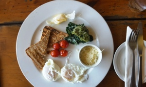 Knysna Elephant Park - Love & Food Cafe (1)