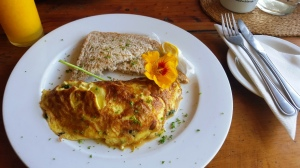 Knysna Elephant Park - Love & Food Cafe (9)