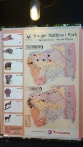KrugerNationalPark (2)